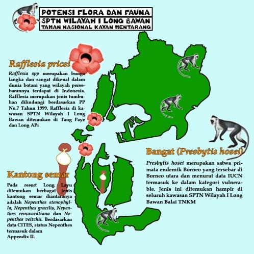 Infografis Potensi flora dan fauna fix